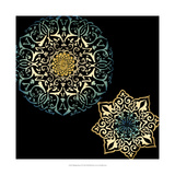 Midnight Rosette IV Giclee Print by Chariklia Zarris