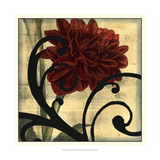 Dahlias and Scrolls III Prints by Jennifer Goldberger