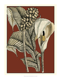 Exotic Botanical I Prints