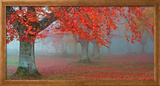 Árboles Rojos Framed Canvas Print by Juan Antonio Palacios