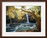 Scenic View of a Waterfall on Havasu Creek Framed Photographic Print by W. E. Garrett