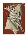 Exotic Botanical II Print