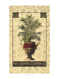 Palm of the Islands II Prints by  Pizetta
