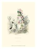 Le Fleur Animé IV Posters by J.J. Grandville