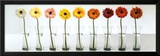 Gerbera Spectrum Print