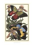 Butterfly III Giclee-tryk i høj kvalitet af  Vision Studio