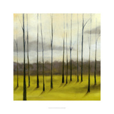 Sunlit Treeline II Posters by Jennifer Goldberger