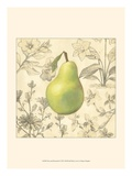 Pear and Botanicals Prints by Megan Meagher