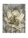 Tulip and Wildflowers VIII Giclee-tryk i høj kvalitet af Jennifer Goldberger