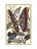 Butterfly II Giclee-tryk i høj kvalitet af  Vision Studio