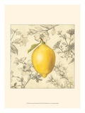 Lemon and Botanicals Posters by Megan Meagher