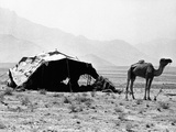 Nomadic Tents Can Be Seen in a Mountainous Area Outside of Kabul, Afghanistan, Sept 17, 1971 Photo