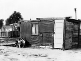 Los Angeles 'Hooverville' Photographic Print