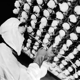 Manufacturing the New Wonder Drug, Penicillin Photographic Print