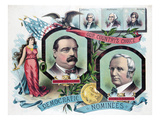 Grover Cleveland, Thomas a Hendricks, the Democratic Candidates for President in 1884 Print