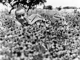 President Lyndon Johnson Lying in a Field of Flower at the LBJ Ranch, Summer, 1966 Posters