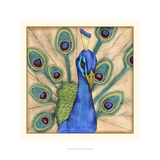 Eccentric Bird I Prints by Jennifer Goldberger