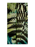 Midnight Ferns II Prints by  Vision Studio
