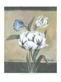White Tulips I Prints by Marietta Cohen