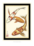 Koi Fish I Art by Chariklia Zarris