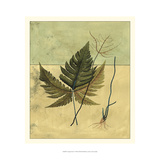 Tropical Fern V Prints by  Vision Studio