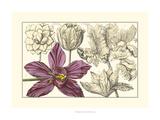 Embellished Arena Botanical IV Prints by  Arena