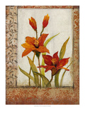 Tulip Inset I Prints by Tim O'toole