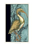 Heron in the Grass I Prints by Jennifer Goldberger
