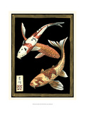 Koi Fish on Black I Print by Chariklia Zarris