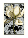 Patterned Magnolia I Giclee Print by Jennifer Goldberger
