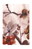 Blossom Poetry II Print by Marietta Cohen