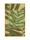 Palm Inset Composition I Prints by Jennifer Goldberger