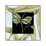 Dragonfly Inset I Art by Jennifer Goldberger