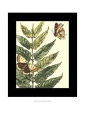Butterflies and Leaves I Prints by Megan Meagher