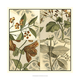 Botanical Quadrant II Prints