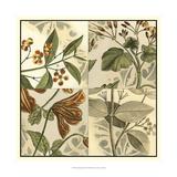 Botanical Quadrant II Prints