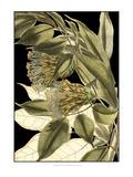 Tranquil Tropical Leaves VI Poster von  Vision Studio