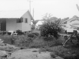 Residential Buildings of the People's Temple in Jonestown, Guyana, Nov 1978 Photo