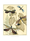 Graphic Dragonflies in Nature II Posters by Megan Meagher