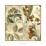 Botanical Quadrant IV Prints by  Vision Studio
