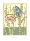 Shell Season IV Posters by Chariklia Zarris