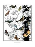 Aviary II Giclee Print by Chariklia Zarris