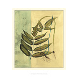 Tropical Fern I Prints by  Vision Studio