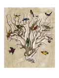 The Ornithologist&#39;s Dream I Giclee Print by Naomi McCavitt