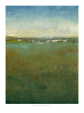 Atmospheric Field II Premium Giclee Print by Tim O'toole