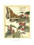 Whimsical Butterflies II Print by Vision Studio