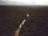 Kaituma River Near People's Temple Agricultural Project, Jonestown, Guyana, 1978 Photo