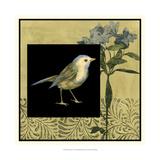 Bird Fantasy I Prints by Jennifer Goldberger