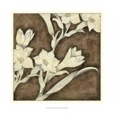 Floral Quartet IV Prints by Megan Meagher