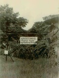 Sign at the Entrance of People's Temple Agricultural Project, Jonestown, Guyana, Nov 1978 Photo